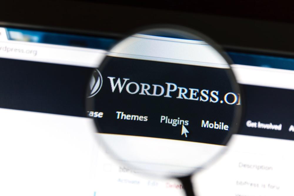 WordPress login page image